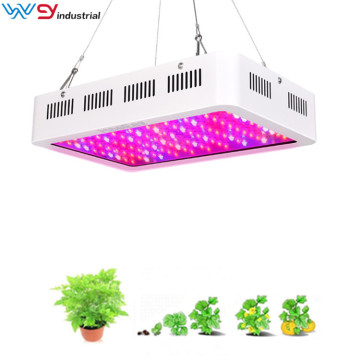 Lámpara de crecimiento de plantas de interior Grow Light 2000W