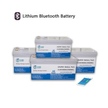 12.8V200AH Lithium Battery with Bluetooth module
