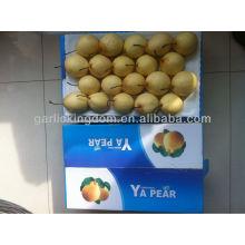Ya pear supply in August ,good taste pear
