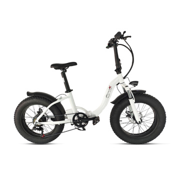2021 electric bicycle fat tire off road bike