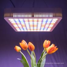 hydroponische Vollspektrum-LED wachsen Licht 300w
