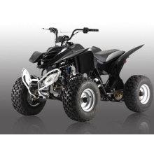 110CC ATV-2