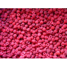 IQF Freezing Organic Raspberry Hr-16090901