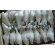 Filet de poisson au poisson peaux congelés