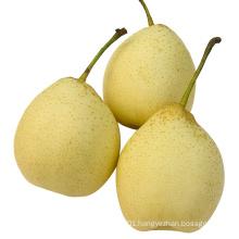 New Crop Good Quality Fresh Ya Pear