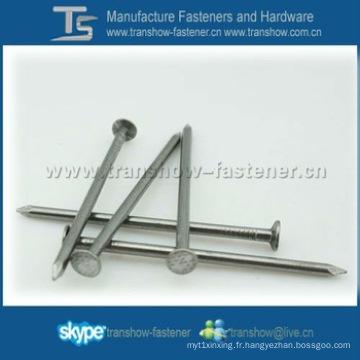 Ongles de fer communs avec Topcreation de marque à Ningbo en Chine