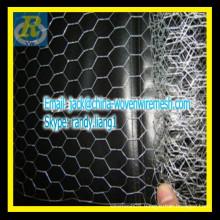 An ping factory Galvanized Hexagonal chicken mesh