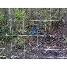 Grillage de clôture de bétail de champ (usine)
