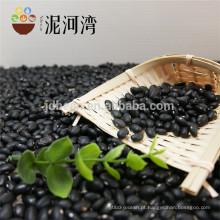 Alta Qualidade Pequeno Preto Kidney Beans Chines price