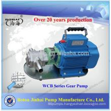 Portable gear oil pump
