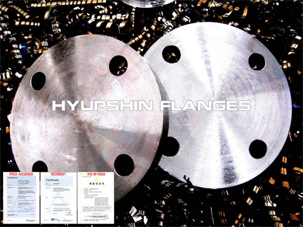 Hyupshin Flanges Blind Pn16