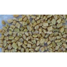 fenugreek seeds supplier