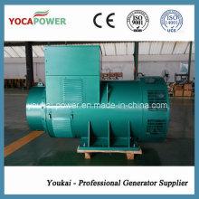 AC Brushless Generator verwendet in Diesel Generator Set 800kw