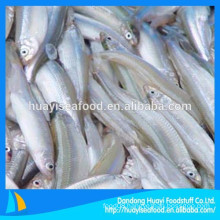 seafood company supply frozen pond smelt with cheap price