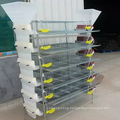 Easy installation galvanized quail layer cages for hot sale