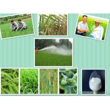 99% Tc Regulador de crecimiento de plantas Kt Kinetin 6-Furfurylaminopurine