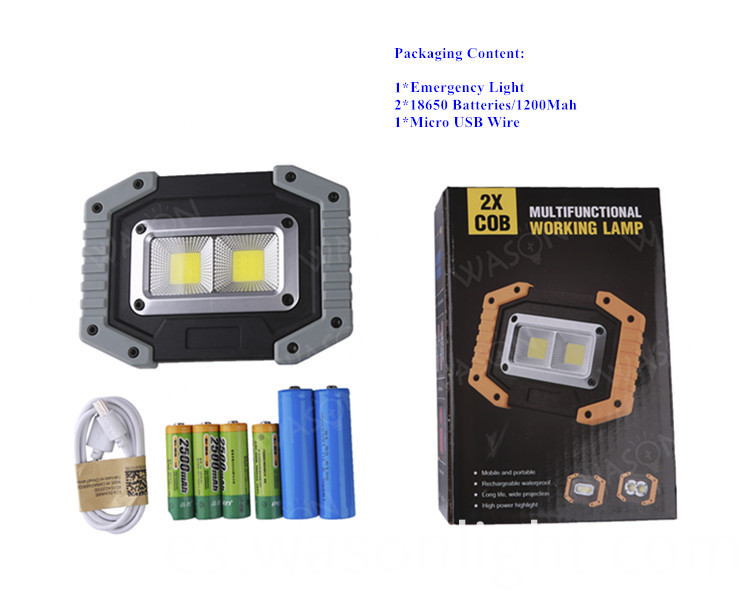 COB Flood Light