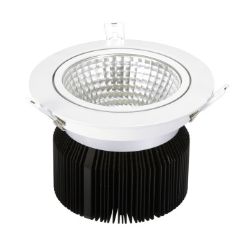 China 20W LED Downlight mit CE RoHS Approvel - China LED Downlight, Downlight