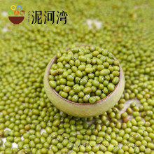 2016 nova colheita verde feijão mungo para brotos em venda quente, origem chinesa