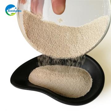 Usine sèche de levure sèche d'alimentation de poudre de levure pour le bétail de porc