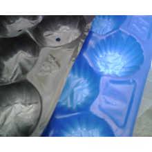FDA / SGS Aprovação Vacuum Formed Thermoforming Perfurado Tamanhos Padrão Europa Embalagem PP Fruta Bandejas para Apple Made in China