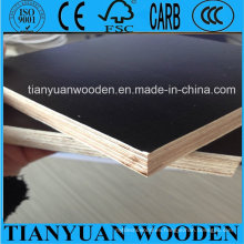 China Poplar Core Film Faced Plywood