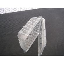 Einweg-Blister-Kunststoff-Tief-Gemüse-Tray