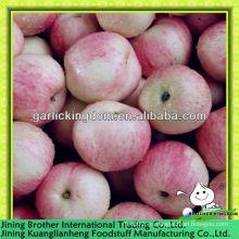 Manzana roja de la gala del cartón 20kg