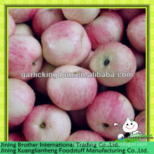 20kg carton red gala apple