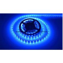 Tira de LED azul 22W Ce y Rhos 120SMD5050