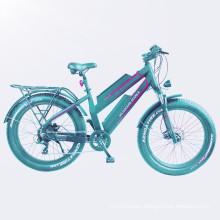 high end double battery mountain ebike electric fat bike
