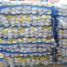 Alho branco normal embalado com 3p em 10 kg saco de malha