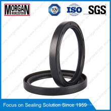 OEM / ODM Custom Rubber Ring como / Tc Type Oil Seal