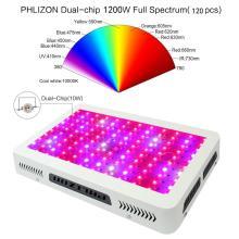 A planta do diodo emissor de luz do poder superior 300W cresce a luz