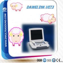 DW-500 Laptop medical ultrasound scanner vet ultrasound for animal use