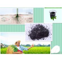 Fertilizante de extracto de algas orgánicas