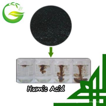 Humic Acid Powder From China Market