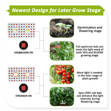 Invernadero LED Grow Lights Marca Phlizon