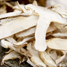 Best Selling Dried Mushroom Slice Manufacturing