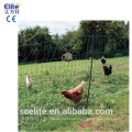 Malla de cerca para pollo de gallina de conejo