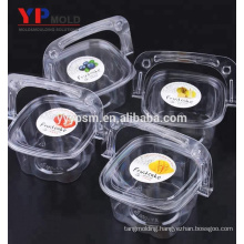 Chinese factory plastic PET material portable cake/fruit/salad box with handle plastic injection mould