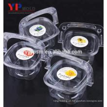 Caixa portátil material plástico do animal de estimação da fábrica do chinês / fruto / caixa da salada com molde da injeção plástica do punho