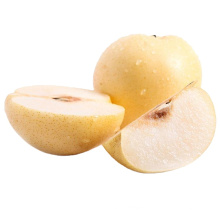 Manufacturer new season fresh and sweet Chinese super gong pear with low price