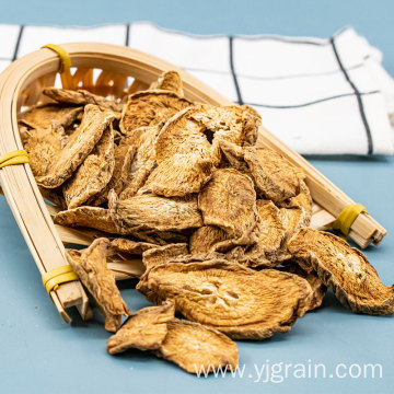 Wholesale Agriculture Products Burdock root Herbal tea