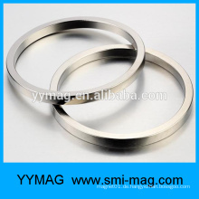 Thin Big Sinter Neodym Ring Magnet