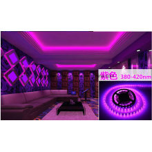 Tira de LED púrpura 14.4W Ce y Rhos 60SMD3014