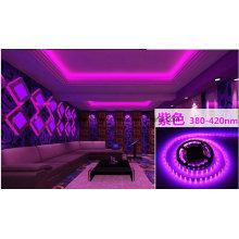 Bande LED Violet 14.4W Ce et Rhos 60SMD3014