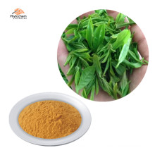 100% Natural for Weight loss 98% polyphenols green tea extract