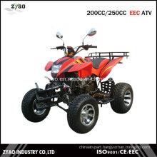 250cc EEC Quad ATV Zea-21-08