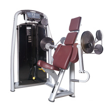 Biceps Curl Machine Commercial Gym Strength Equipment